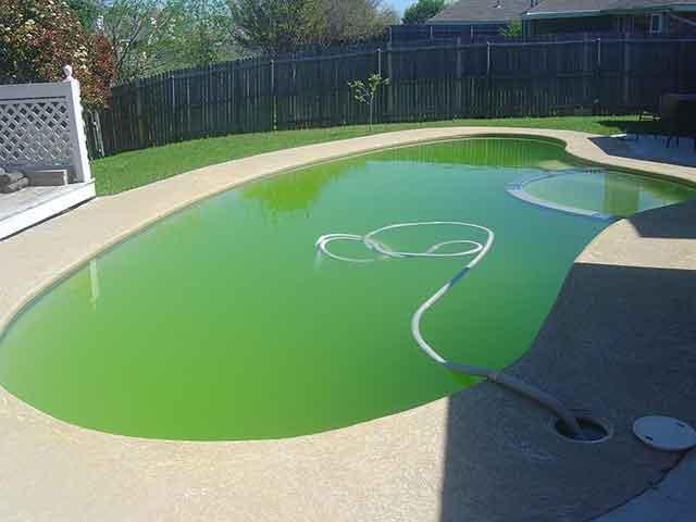 Green-pool